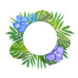Creative layout of foliage on a white background with space for text. Frame of leaves and flowers. Floral background. View from ab. Ove Royalty Free Illustration
