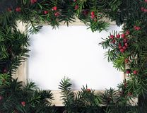 Creative layout made from Christmas tree branches with red berries and frame paper card note. Copy space for text. Flat lay. Creative layout made from Christmas royalty free stock photography