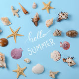 Creative layout made of different colorful seashells and greeting card with Hello Summer Lettering Royalty Free Stock Photos