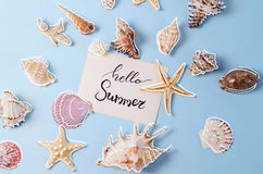 Creative layout made of different colorful seashells and greeting card with Hello Summer Lettering Stock Images