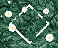 Creative layout made of flowers and leaves with paper frame. Flat lay. Eco nature concept.  Stock Photo