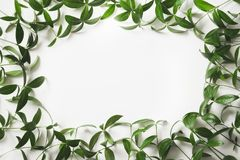Creative layout made of green leaves with empty blank for note on white background. Top view. Stock Photos