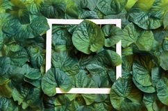 Creative layout made of leaves with paper frame. Flat lay. Nature concept.  Royalty Free Stock Photos