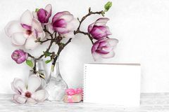 Creative layout made with pink magnolia flowers, empty card and gift box on white wooden background stock images