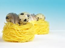 Creative layout made of quail eggs and feathers on yellow pasta nests on blue background. Spring and Easter holiday concept food stock photography