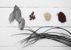 Creative. The leaves and coffee beans on a white background. Creative eyes, pigtails. Types of coffee on a wooden table top white, black and white leaves Stock Photography