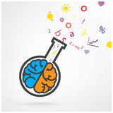 Creative left and right brain sign with the test tube on grey ba Royalty Free Stock Image