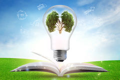 Creative light bulb over textbook with strategy plan, Brain of t Stock Photo