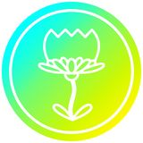 A creative lotus flower circular in cold gradient spectrum. An original creative lotus flower circular in cold gradient spectrum vector illustration