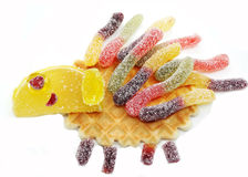 Creative marmalade fruit jelly sweet food hedgehog form Royalty Free Stock Photo