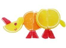 Creative marmalade fruit jelly sweet food rhino form Stock Images