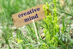 Creative mind wooden sign. Creative mind on wooden sign in garden with flower royalty free stock photos