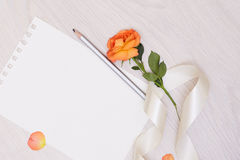Creative mock up with a card and orang rose. Empty sheet of paper. Royalty Free Stock Photo