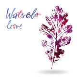 Creative modern eco tree leaf logo painted in watercolor Stock Images