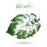 Creative modern eco tree leaf logo painted in watercolor. Illustration Royalty Free Stock Photography