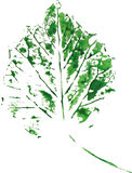Creative modern eco tree leaf logo painted in watercolor Royalty Free Stock Photos