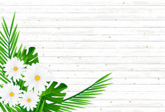 Creative natural layout tropical flowers and green leaves on bac Royalty Free Stock Images
