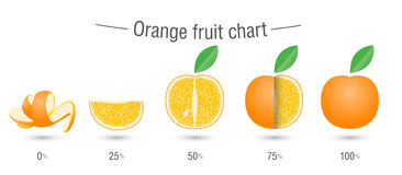 Creative orange fruit chart Stock Photography