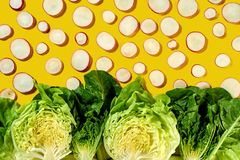 Creative organic pattern from clices of radish and green halves of diferent types of salad - romaine, iceberg on a royalty free stock image