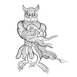 Creative Owl Royalty Free Stock Images