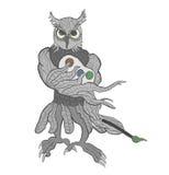 Creative Owl Stock Photos