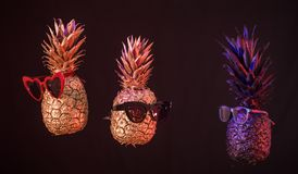 Creative pineapples with glasses on a black background royalty free stock photography