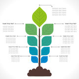 Creative plant info-graphic Royalty Free Stock Photos