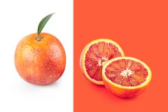 Creative poster with halfed and sicilian orange isolated on white and living coral background. Copy space for design. Concept. Creative poster with halfed and stock images