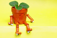 Creative pot Royalty Free Stock Photo
