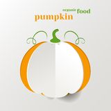 Creative Pumpkin Royalty Free Stock Images