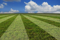 Creative real photo of soccer football grass field Stock Photography