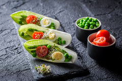 Creative salad in chicory with egg, sprouts and avocado Stock Photos