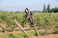 Creative Scarecrow Stock Photos