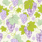 Creative seamless grape background. Stock Image