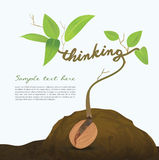 Creative seed idea abstract info graphic, concept . Stock Photo