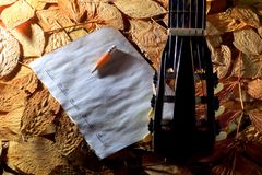 Acoustic guitar, blank music notes, pencil with autumn leaves background. Creative set of acoustic guitar, blank music notes and pencil Royalty Free Stock Photography
