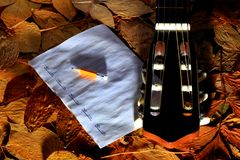 Acoustic guitar, blank music notes, pencil with autumn leaves background. Creative set of acoustic guitar, blank music notes and pencil Royalty Free Stock Images