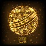 Creative shiny ball for Cricket Mania concept. Stock Photo
