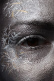 Creative silver make-up. Close-up of creative silver make-up royalty free stock photo