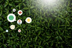 Creative style made of flowers and leaves with notes lying flat royalty free stock photography
