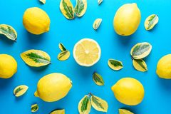 Creative summer pattern made of lemons and green leaves Royalty Free Stock Images