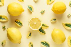 Creative summer pattern made of lemons and green leaves Stock Images