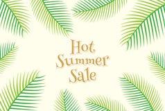 Creative summer sale banner design. Creative hot summer sale banner design, palm leaf vector Royalty Free Stock Photo