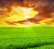 Creative sunset landscape Stock Image