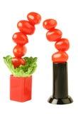 Creative tomato tree Stock Photos