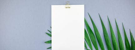 Mockup blank white postcard tropical palm leaves. Creative top view mock up blank paper sheet postcard clipboard tropical palm leaves blue grey paper background stock image