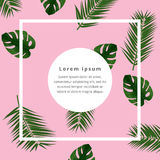 Creative Vector brochure template. Background  with frame on tropical leaves anp plase for text . Trendy vector illustration Stock Photos