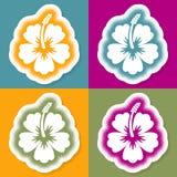 Creative vector halftone hibiscus flower sign card vector illustration