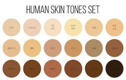 Creative vector illustration of human skin tone color palette set isolated on transparent background. Art design. Abstract concept person face, body complexion vector illustration