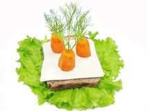 Creative vegetable sandwich with cheese and carrot Royalty Free Stock Image